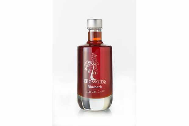 Blossoms Rhubarb Syrup