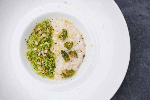Acorn Sprout Risotto