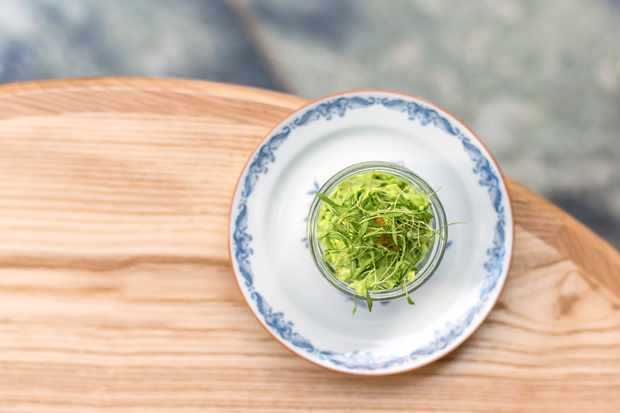 celeriac and lovage