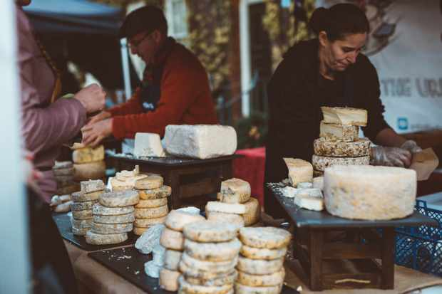 London Cheese Project cheese selection