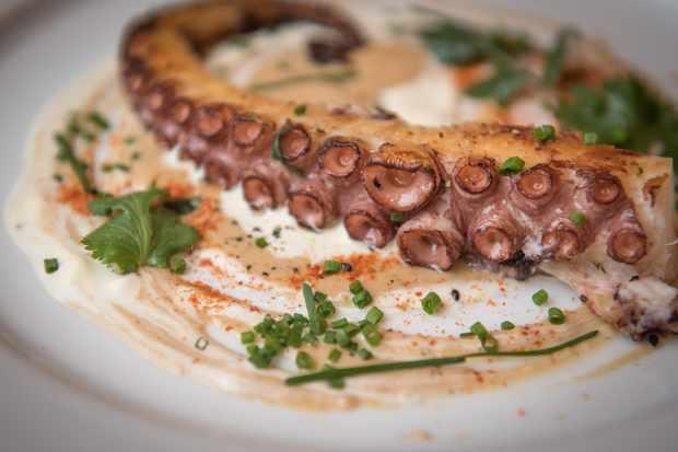Le Roi Fou, Edinburgh: Grilled octopus, wild garlic aioli