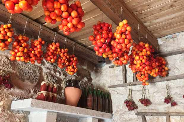Le Stanzie hanging tomatoes