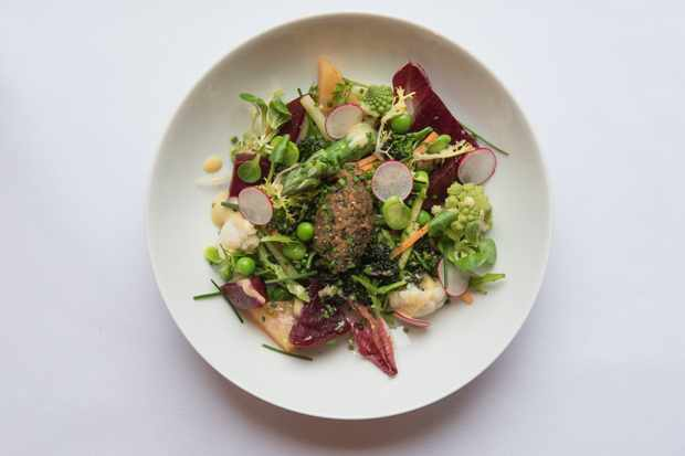 Le Roi Fou, Edinburgh: Spring garden vegetables salad