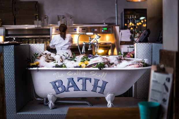 The Scallop Shell Bath - Catch of the day bath