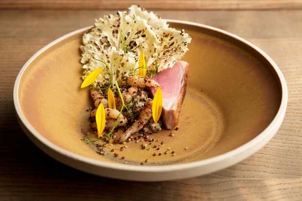 Hispi - fera lamb quinoa