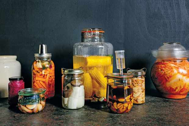 The low down of fermenting - Collection of Vessels