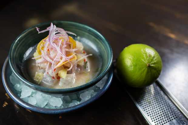 Hot ceviche- Coya, Angel Court