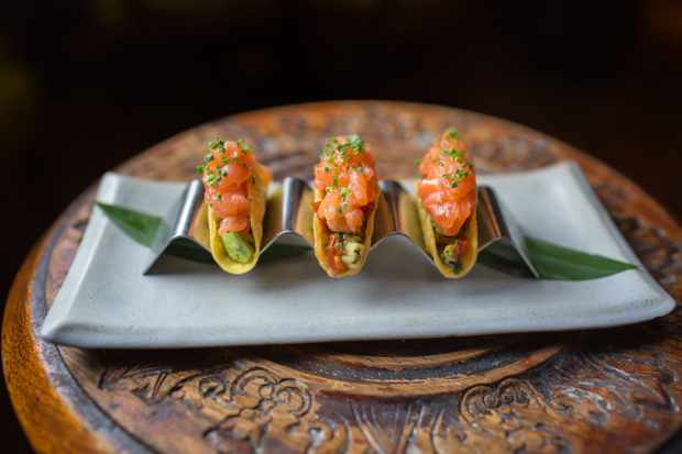 Salmon taco, Coya, Angel Court