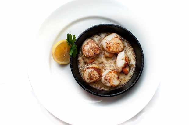 A white plate has a small black bowl on top of it. In the bowl are give caramelised scallops with a wedge of lemon at the side