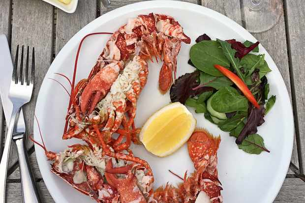 Isles of Scilly, Lobster at Holy Vale Vineyard