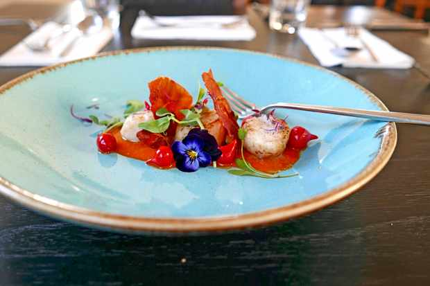 Isles of Scilly, Vibrant scallops at Karma Hotel and Restaurant on St Martin's