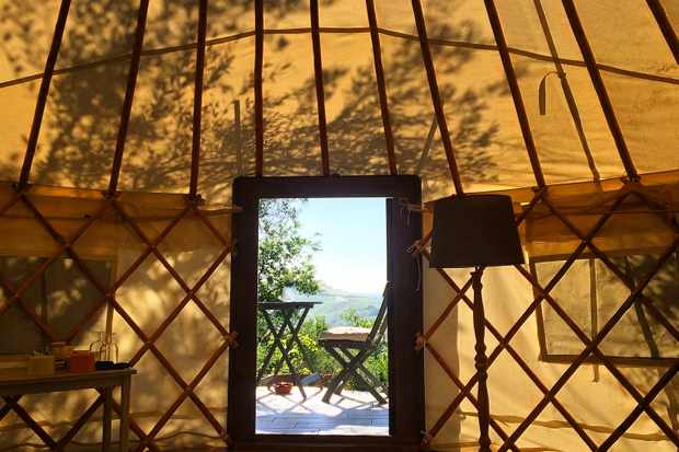 The inside of a yurt with shadow of an olive tree cast over the roof