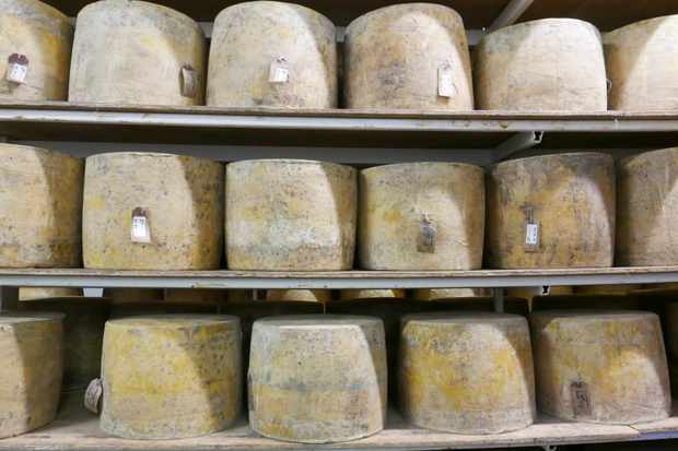 Isle of mull cheese at glass barn