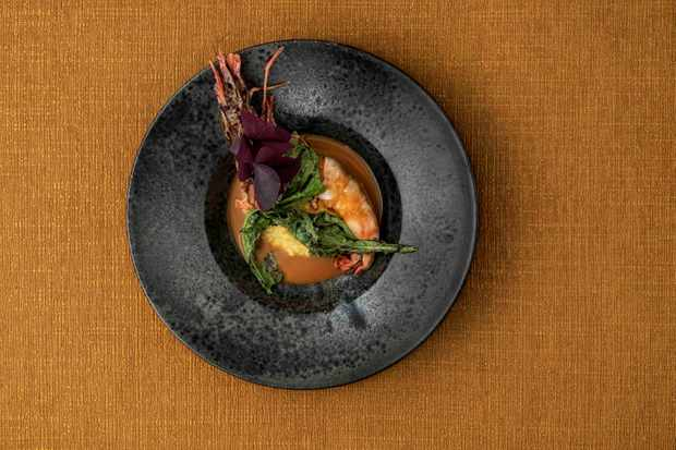 Tiger prawn in black bowl on gold background