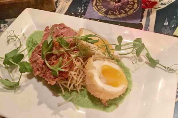 Ham hock terrine starter with pea shoots, Scotch eggs and mint puree