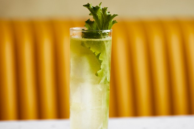 Greengage, vodka, chamomile and cider vermouth