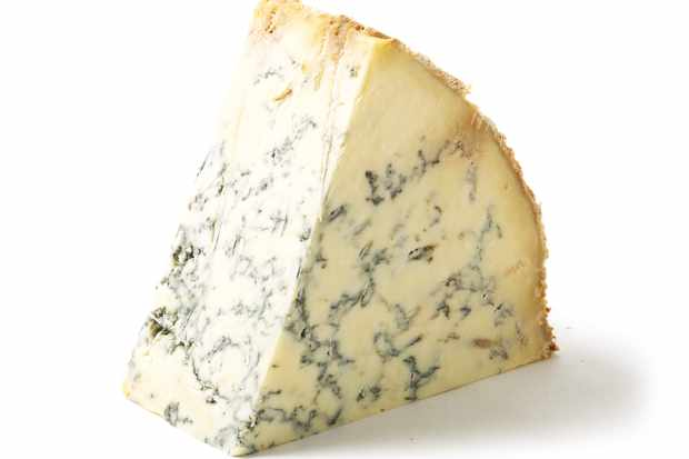 Stilton Cheese for Christmas Cheese Board