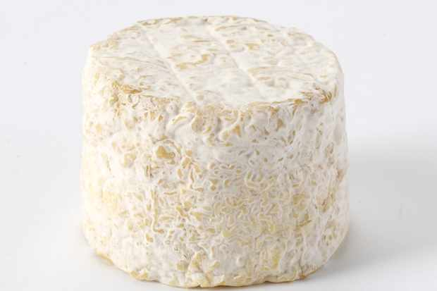 Bix Cheese for Christmas Cheese Board
