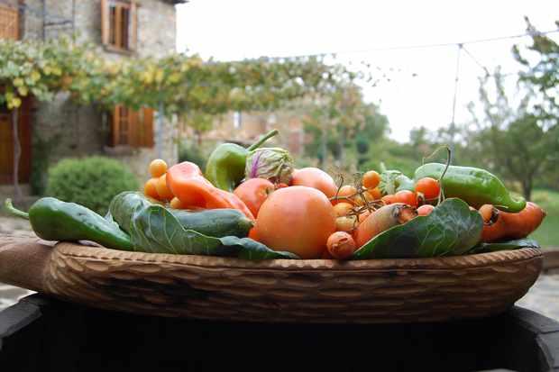Plate of vegetables at Villa Dihovo Macedonia