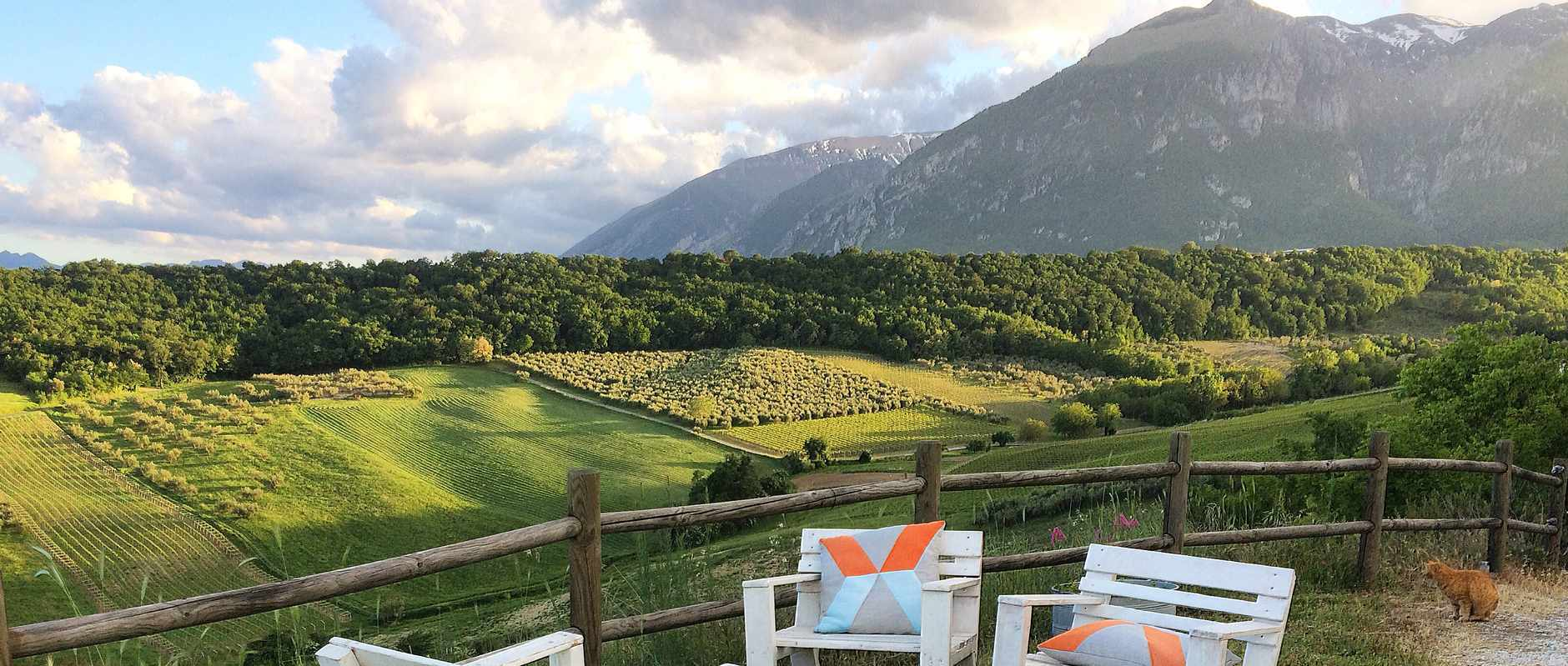 The rolling fields at Fireflies and Figs, Abruzzo
