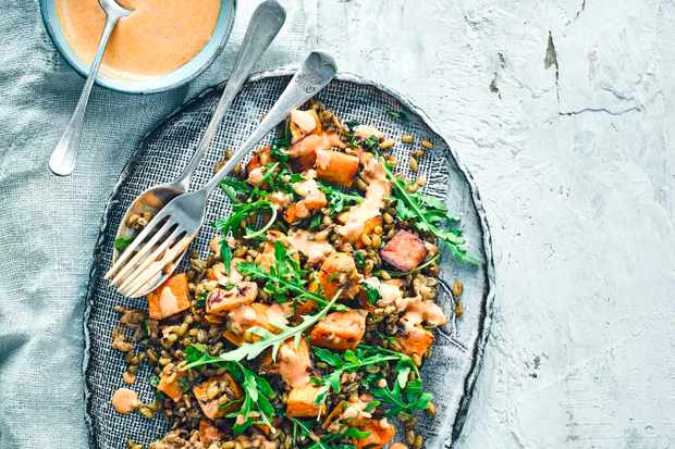 Roasted Sweet Potato Recipe with Freekeh Grain Salad