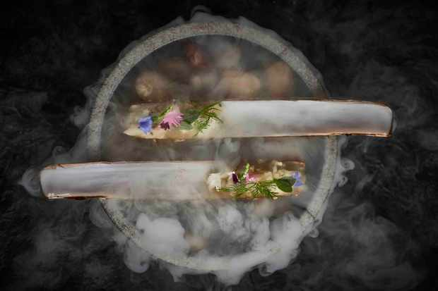 Razor Clams Frog by Adam Handling