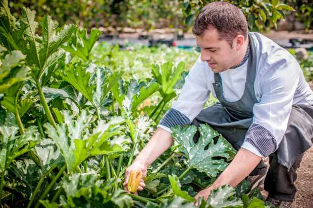 The Hotel Relais Villa Del Golfo & Spa's vegetable patch