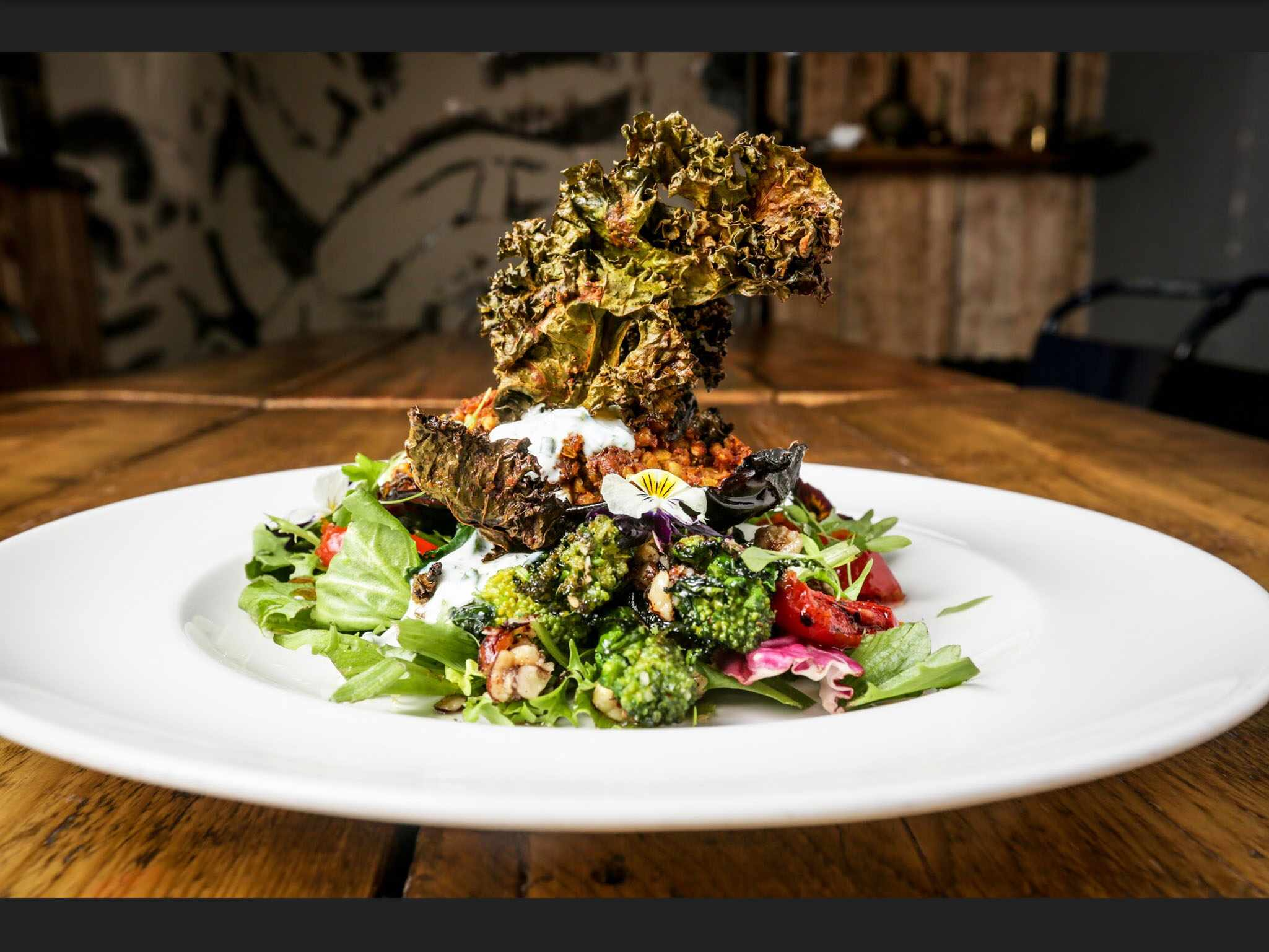 Best Plant Based Restaurants