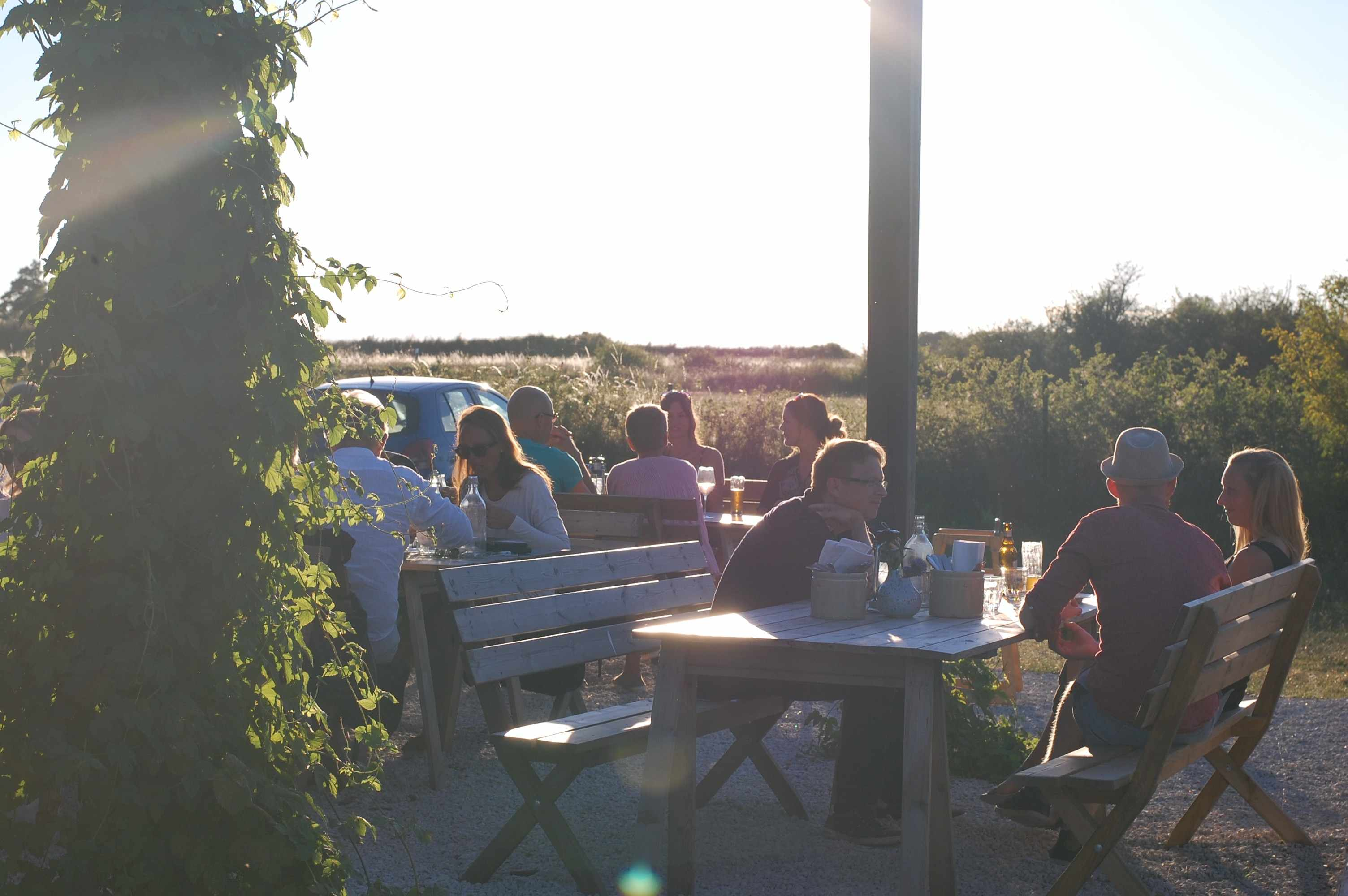 Where to Eat, Drink and Sleep in Gotland, Sweden