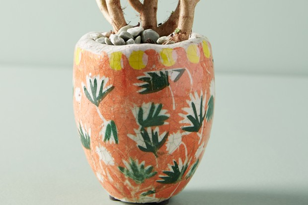 An orange terracotta pot with green leaf print and crackle glaze effect with a tree planted in it