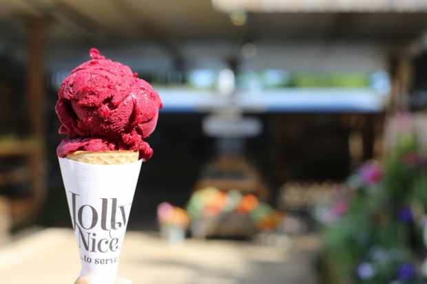 Damson ice cream at Jolly Nice