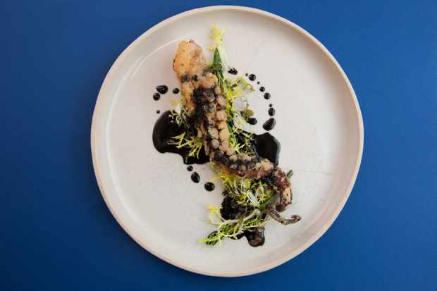 Pickled octopus, ink, lemon verbena and fermented soy beans