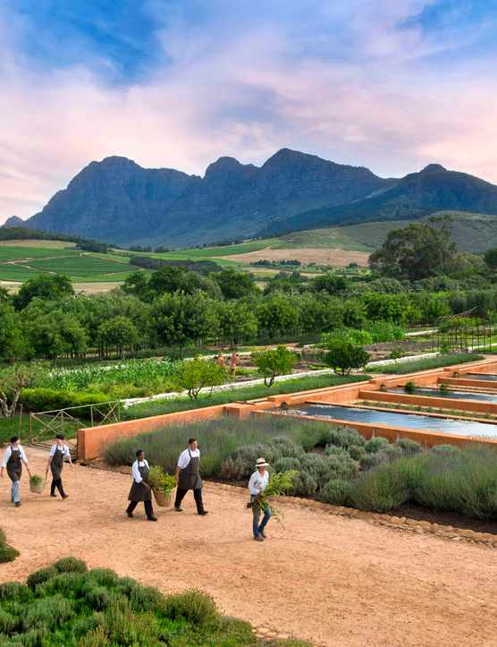 Babylonstoren, Stellenbosch, South Africa: Hotel Review