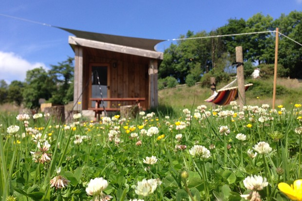 Cabin UK at One Cat Farm, Wales