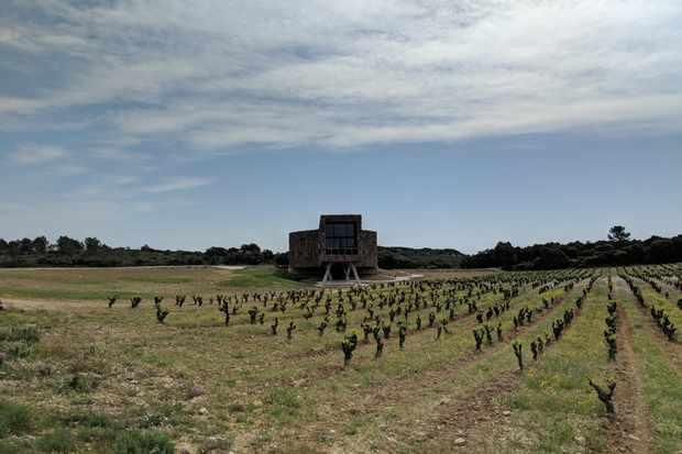 Wine chai and vineyards at Village Castigno