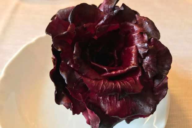 Rosa di Gorizia radicchio at Trattoria al Giardinetto