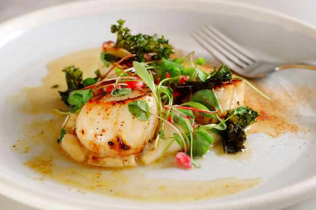 Scallops with parsley root purée at Bridge Cottage Bistro