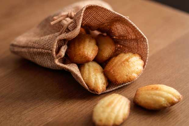 Freshly baked madeleines