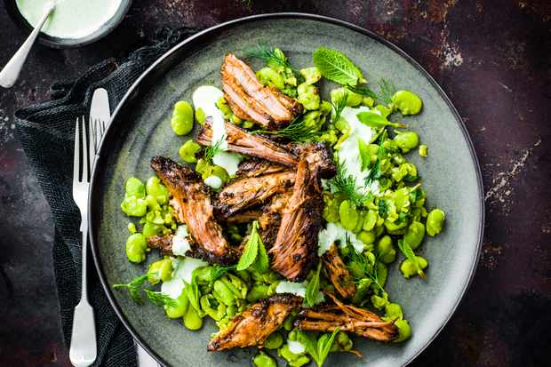 Lamb Shawarma Recipe with Broad Beans