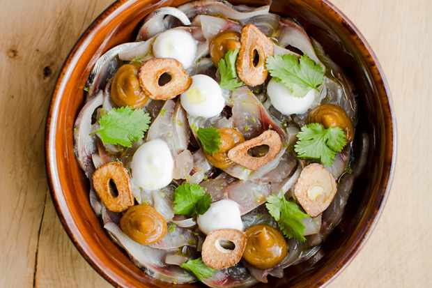 Raw mackerel, lime pickle, coconut and coriander. Photo credit Cedar film