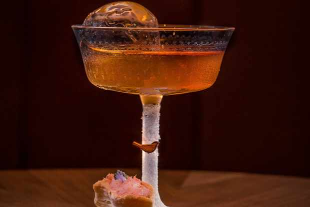 A coupette glass filled with dark orange liquid