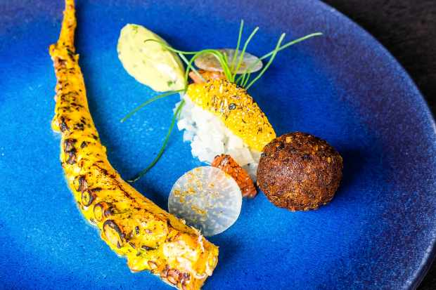 For starters - Samudrapheni (octopus, tandoori spices, pickled mooli and citrus)