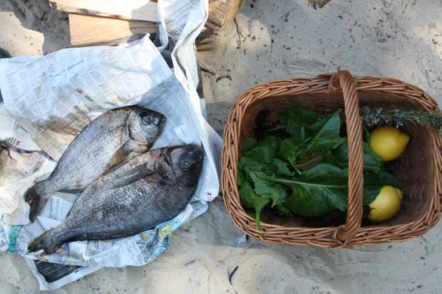 Fresh fish and a basket of foraged food at Fore Adventures