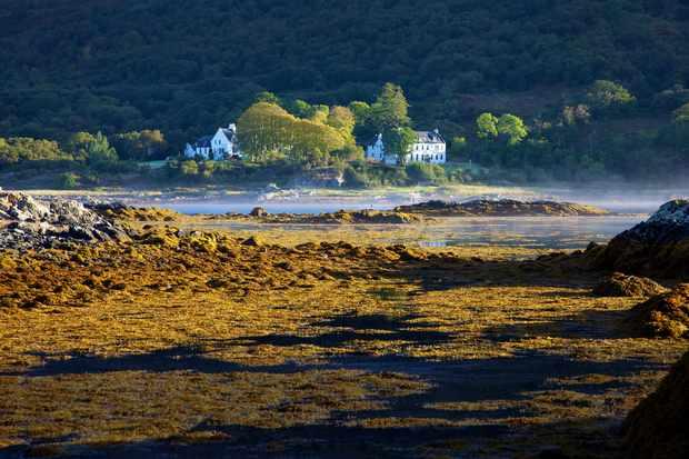 Kinloch Lodge across the loch morning mist