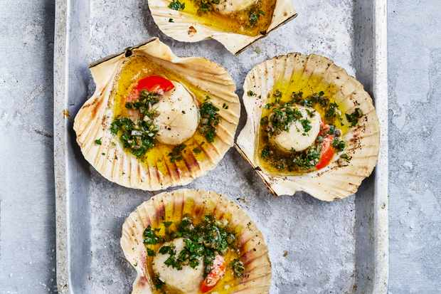 BBQ Scallops in Shell Recipe