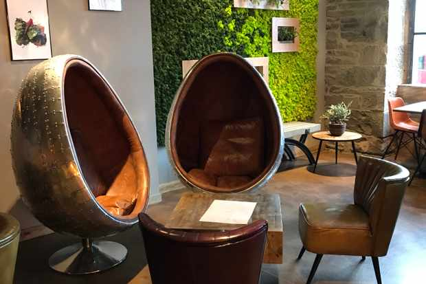 Brassica DUndee Egg chairs