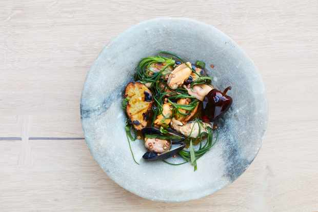 Rovi, London W1: Restaurant Review