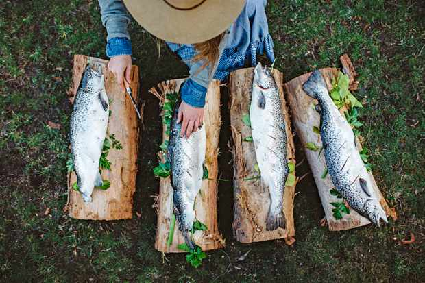 Four whole fish on planks on grass at Sarah Glover Bonfire Feast