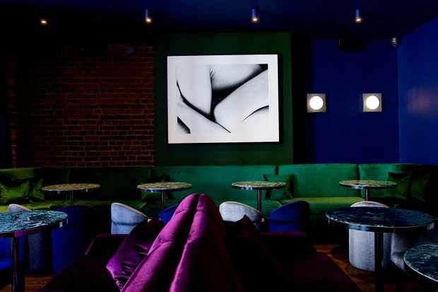 A room with dark blue walls and green and purple seating