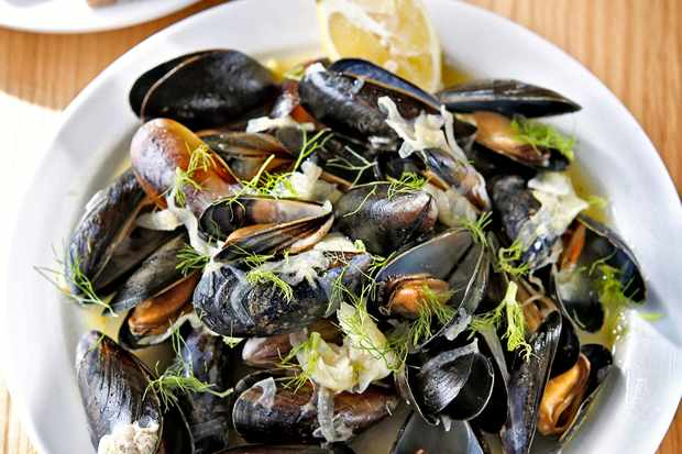 Shetland Mussels Recipe with Fennel